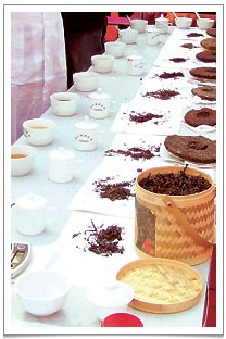 Tea accessing in China where unlike the western style of tea tasting, we actually drink the tea. After a whole day of drinking freshly brewed teas, I did felt a bit tipsy at the end of the day.