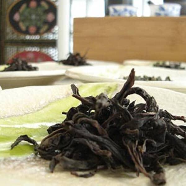 teanamu chaya teahouse tea masterclass flight of tea tastings