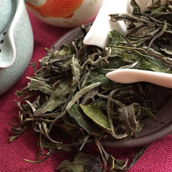 teanamu chaya teahouse white tea organic snow buds